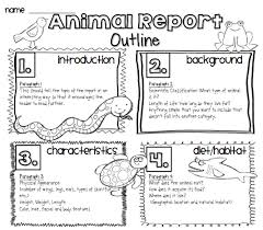 animal report template animal reports for for k use these