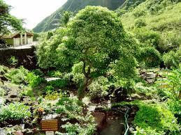 Iao Valley State Park Map by Shore Excursion Maui Tropical Plantation Maui Kahului Hi