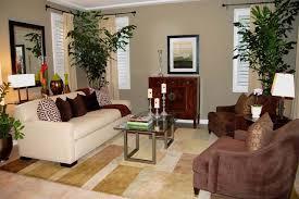 plants for living room 100 best plants for living room best 25 indoor floor plants