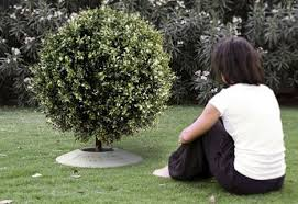 cremation tree poetree a funeral urn that lets you plant a tree from ashes