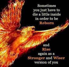 best 25 meaning of phoenix ideas on pinterest rising phoenix