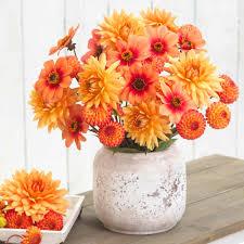 dahlia assorted soft orange mix beautiful flower arrangements