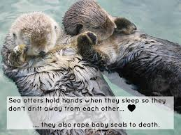 Baby Seal Meme - zoology do sea otters rape baby seals to death skeptics stack
