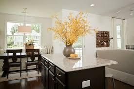 Kitchen Open Floor Plan Open Floor Plan Kitchen Cottage Kitchen Sabal Homes Sc