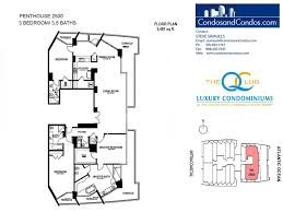 hilton q club ft lauderdale beach resort condos for sale