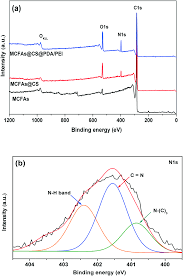 a mussel inspired hybrid copolymer adhered to chitosan coated