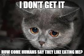 Eat Me Meme - humans eat what imgflip