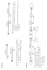 patent ep2218731a1 chlamydia trachomatis genomic sequence and