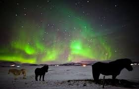 trips to see northern lights 2018 iceland guided tour kingdom of glaciers and northern lights