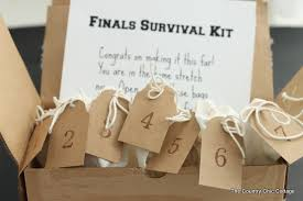 care packages for college students finals survival kit a college care package the country chic