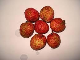 fruit similar to lychee fruits of pakistan پاکستان کے پھل pakmitti