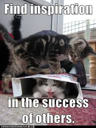 Success Cat Meme - growth mindset memes find inspiration in the success of others