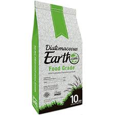 Summer Garden Food Manufacturing - amazon com diatomaceous earth food grade 10 lb garden u0026 outdoor