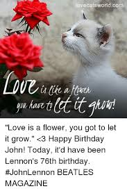 Birthday Love Meme - have fr lovecatsworldcom love is a flower you got to let it grow 3