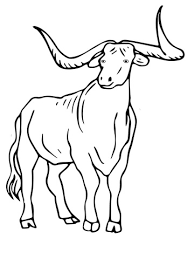 texas longhorn cartoon coloring page cartoon awesome pictures