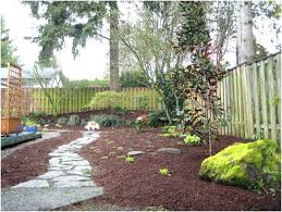 backyard ideas for dogs dog yard ideas backyard ideas for dogs backyard ideas for dogs that