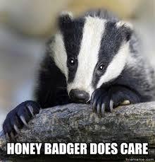 Honey Badger Meme Generator - livememe com depressed badger