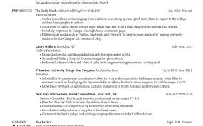 sample document controller resume download network field engineer