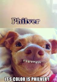 Tuna The Dog Meme - philver hermes pinterest dog group text and humor