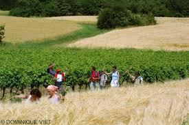 chambre regionale agriculture région occitanie on la chambre régionale d agriculture