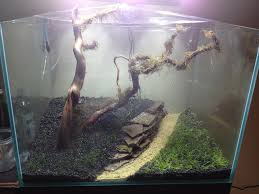 Substrate Aquascape Planted Tank Substrate Divider The Planted Tank Forum