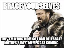 Funny Mothers Day Memes - meme maker brace yourselves the im a dog mom so i can celebrate
