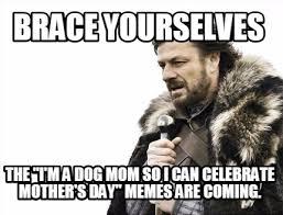 Mothersday Meme - meme maker brace yourselves the im a dog mom so i can celebrate