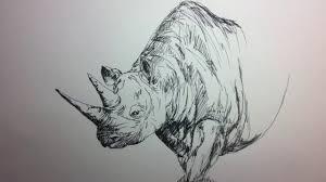 fountain pen sketch how to sketch a rhinoceros youtube