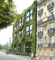 vertical garden installations archives living walls and vertical