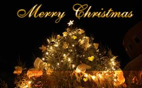 advance merry christmas 2016 images pictures whatsapp dp photos