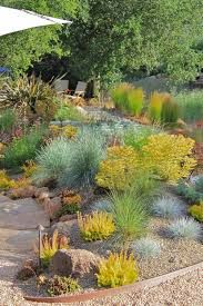 the environmental benefits of eco friendly xeriscaping lifescape