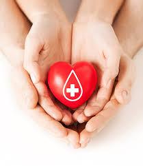 Seeking Blood Cross Seeking Blood And Platelet Donations S Lifestyle