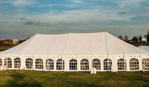 party tent s birthday party ideas