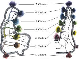Foot Reflexology Map Reflexology And The Chakras How To Balance The