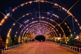 Zoo Lights Houston by Austin Trail Of Lights