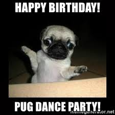 Birthday Pug Meme - happy birthday pug dance party confused pug meme generator