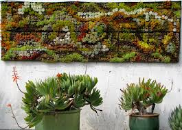 modern fence vertical succulent garden although be gallery and