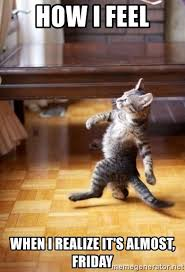 Almost Friday Meme - how i feel when i realize it s almost friday haters cat meme