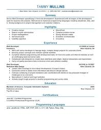 Resume Examples Summary by Web Developer Resume Sample Summary Highlights Experience
