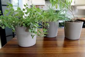 herb pots for windowsill diy leather herb labels chris loves julia