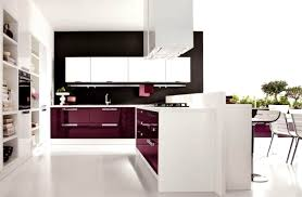 online kitchen cabinet best kitchen stunning affordable cabinets