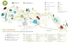 Map Of Memphis Tennessee memphis zoo images memphis zoo map hd wallpaper and background