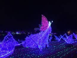 Zoo Lights Az by Five Can U0027t Miss Summer Light Festivals Travel Smithsonian