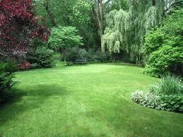 desert garden landscaping u2013 satuska co