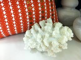 decorating with sea corals 34 stylish ideas digsdigs decorating with sea corals 34 stylish ideas digsdigs