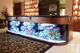 Aquarium Decor Ideas Fish Tanks Decorating Ideas Realistic Fish Tank Decoration Ideas