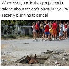 Have Fun Meme - have fun y all memebase funny memes