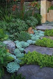 Drought Friendly Landscaping by Xeriscaping The Art Of Drought Resistant Landscaping Zing Blog