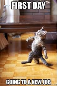 New Cat Meme - first day going to a new job walking cat meme generator