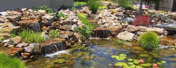 san diego water landscape design backyard waterfalls water features